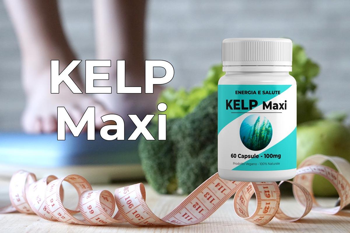 Kelp Maxi